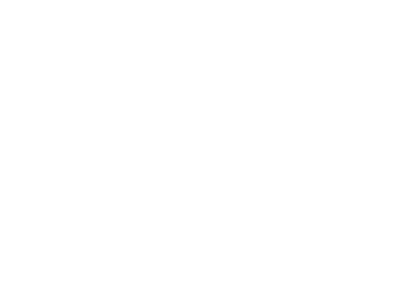 Pegasus Anwaltskanzlei Zuercher
